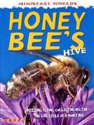 Buy Minibeast Worlds: Honey Bee's Hive from Daintree Books