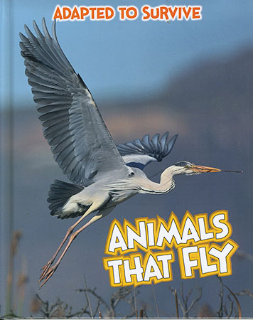 Buy Adapted to Survive: Animals That Fly from Daintree Books