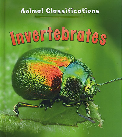 Buy Animal Classifications: Invertebrates from Daintree Books