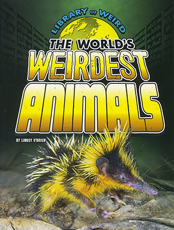 Buy Library of Weird: World's Weirdest Animals from Daintree Books