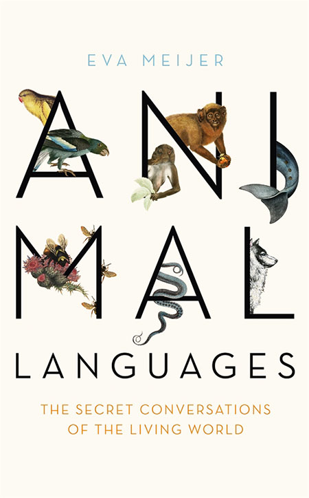 Buy Animal Languages from BooksDirect