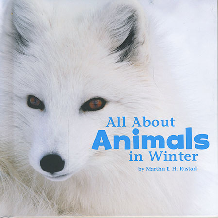 Buy Celebrate Winter: All About Animals in Winter from Daintree Books