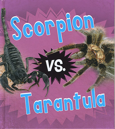 Buy Animal Rivals: Scorpion vs. Tarantula from raintreeaust