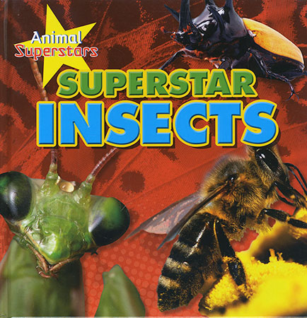 Buy Animal Superstars: Superstar Insects from BooksDirect
