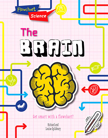 Buy Flowchart Science: The Brain from Daintree Books