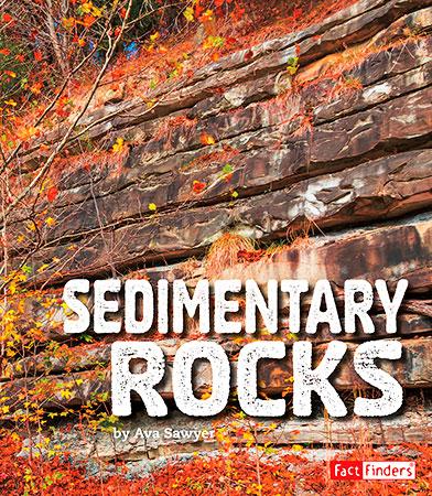 Buy Rocks: Sedimentary Rocks from Daintree Books