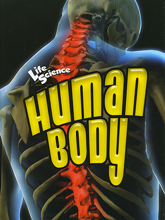 Buy Life Science: Human Body from Daintree Books