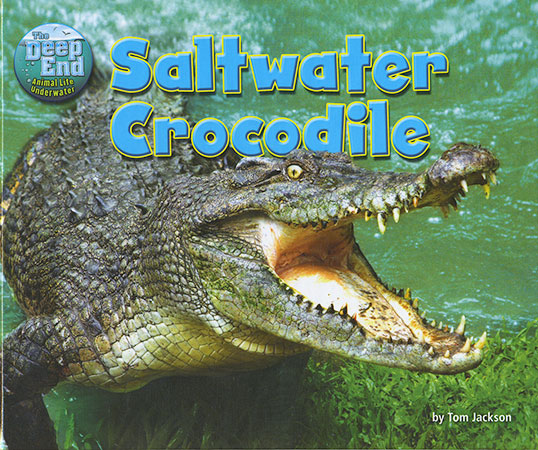 Buy The Deep End: Saltwater Crocodile from Daintree Books