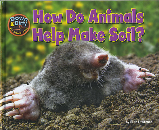 Buy Down and Dirty: How Do Animals Help Make Soil? from raintreeaust
