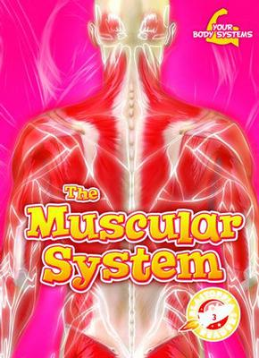 Buy Your Body Systems: The Muscular System from raintreeaust