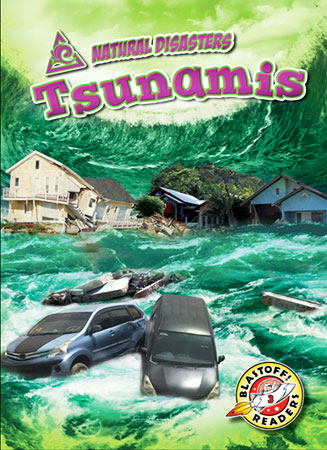 Buy Natural Disasters: Tsunamis from Daintree Books