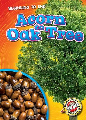 Buy Beginning To End: Acorn to Oak Tree from Daintree Books