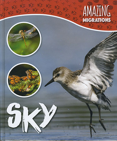 Buy Amazing Migrations: Sky from Daintree Books