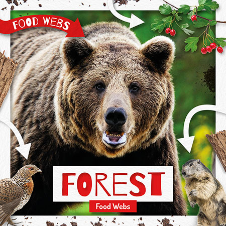 Buy Food Webs: Forest Food Webs from BooksDirect