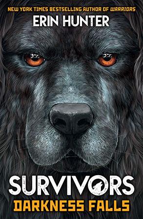 Buy Survivors: #3 Darkness Falls from BooksDirect