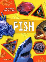 Buy Amazing Life Cycles: Fish from Daintree Books