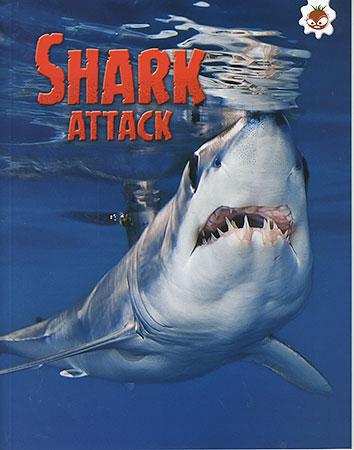 Buy Shark!: Shark Attack from raintreeaust