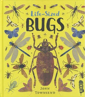 Buy Life-Sized Bugs from BooksDirect