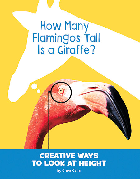 Buy Silly Measurements: How Many Flamingos Tall Is a Giraffe? from raintreeaust