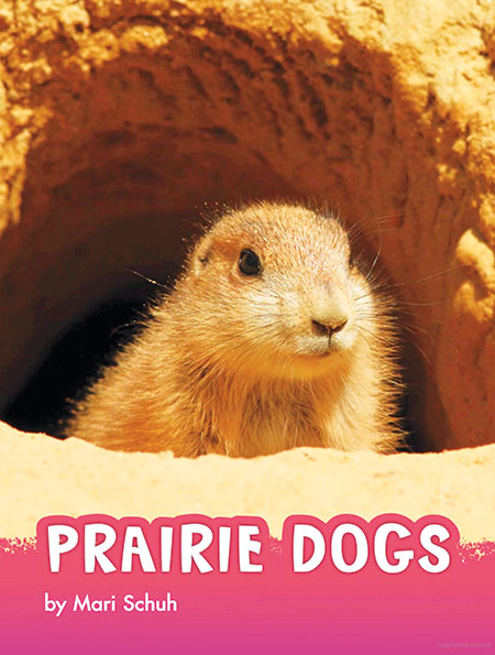 Buy Animals: Prairie Dogs from BooksDirect