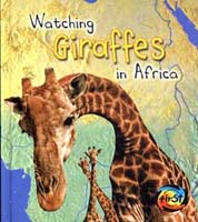 Wild World: Watching Giraffes in Africa