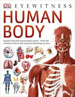 DK Eyewitness: Human Body