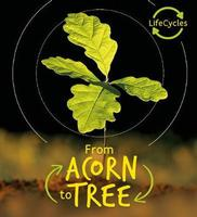 Buy Lifecycles: Acorn to Tree from Book Warehouse