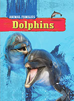Animal Families: Dolphins