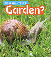 What Can Live There: Garden?