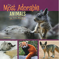 All About Animals: Most Adorable Animals in the World