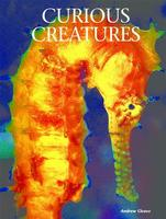 Creatures of the Ocean: Curious Creatures