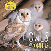 Buy Animals & their Babies: Owls & Owlets from BooksDirect