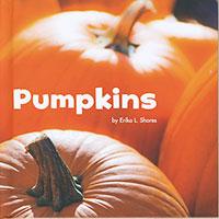 Celebrate Autumn: Pumpkins