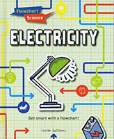 Buy Flowchart Science: Electricity from BooksDirect