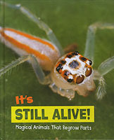 Buy Magical Animals: It's Still Alive! from Book Warehouse