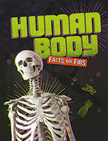 Facts Or Fibs: Human Body