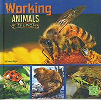 All About Animals: Working Animals
