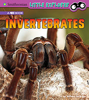 Little Zoologist: Invertebrates: A 4D Book