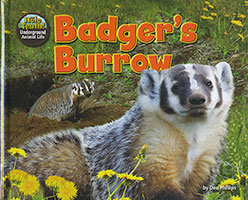 Buy The Hole Truth: Badger's Burrow from Book Warehouse