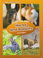 Earth's Amazing Animals: Hares and Rabbits