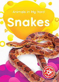 Animals in My Yard: Snakes