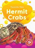 Favorite Pets: Hermit Crabs