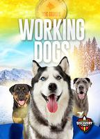 Dog Groups: Working Dogs
