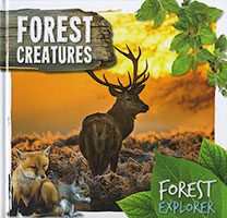 Buy Forest Explorer: Forest Creatures from Book Warehouse