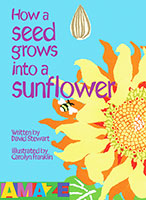 Buy Amaze: How a Seed grows into a Sunflower from BooksDirect