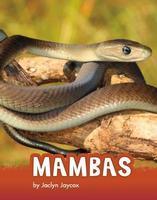 Animals: Mambas